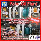 rice bran oil solvent extraction plant, palm oil turkey project