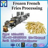 frozen french fries plant