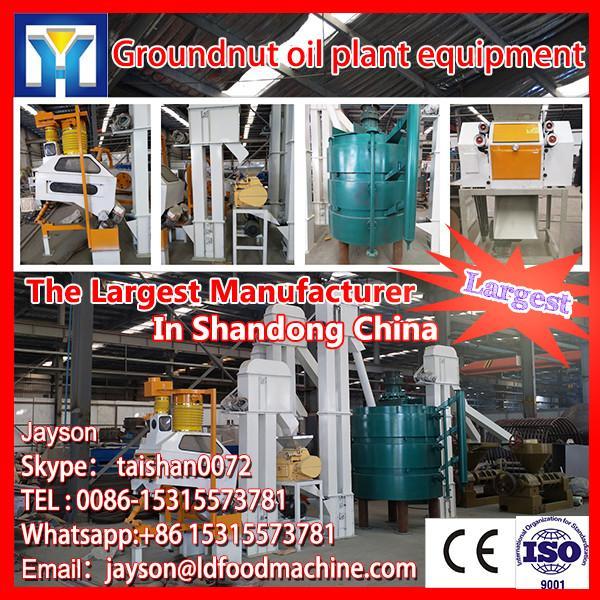Vertical hydraulic oil press/cold press oil machine popular in Asia #1 image